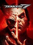 TEKKEN 7 【PC版】Steamコード 日本語対応 有効化マニュアル付き(コードのみ)鉄拳7