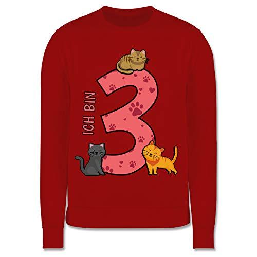 Shirtracer Kindergeburtstag Geschenk - 3. Geburtstag Katzen - 104 (3/4 Jahre) - Rot - Katze Pullover Kinder - JH030K - Kinder Pullover