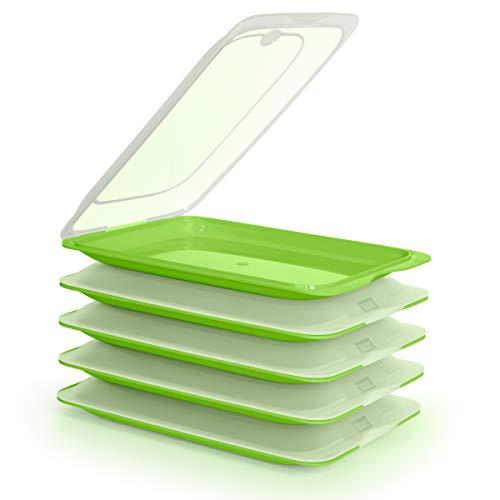 PracticFood Tatay Fresh System - Hochwertige Aufschnitt-Boxen, Frischhaltedose für Aufschnitt. Optimale Aufbewahrung im Kühlschrank, Maße 17 x 3.2 x 25.2 cm (5X Grün)