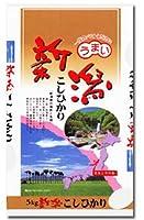 【玄米】 新潟県 栃尾産 コシヒカリ 令和2年度産 (玄米, 10kg)