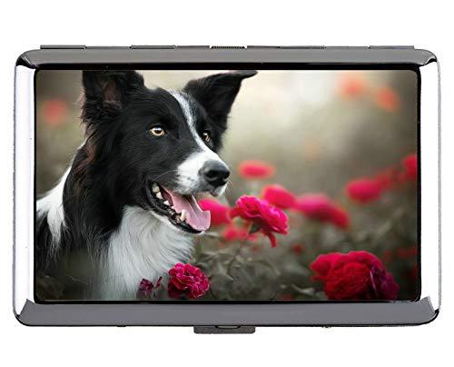 Caja de Cigarrillos para Llevar en el Bolsillo, Titular de la Tarjeta del Acero Inoxidable del Border Collie de la Flor Color de Rosa del Perro de Animal doméstico