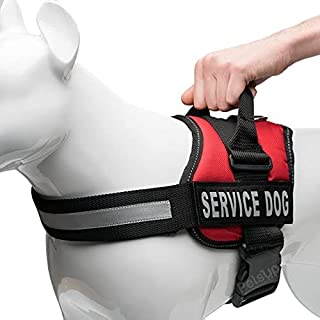 RvPaws Dog Harness, Chest Body Belt for Dogs (30-39-inch Girth, Red)