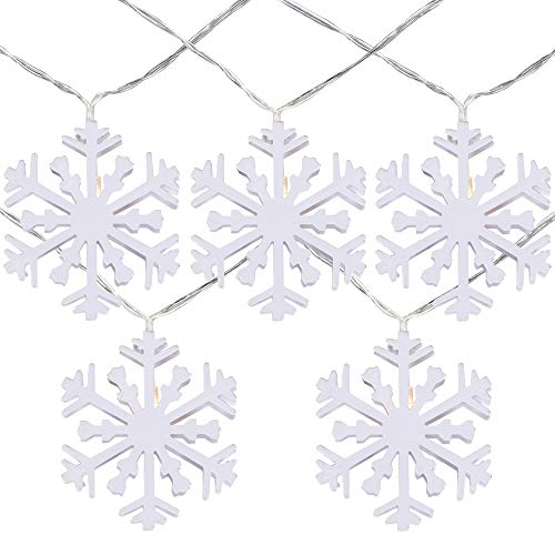 Northlight 10 B/O White Snowflake LED Warm White Christmas Lights - 4.5 ft Clear Wire