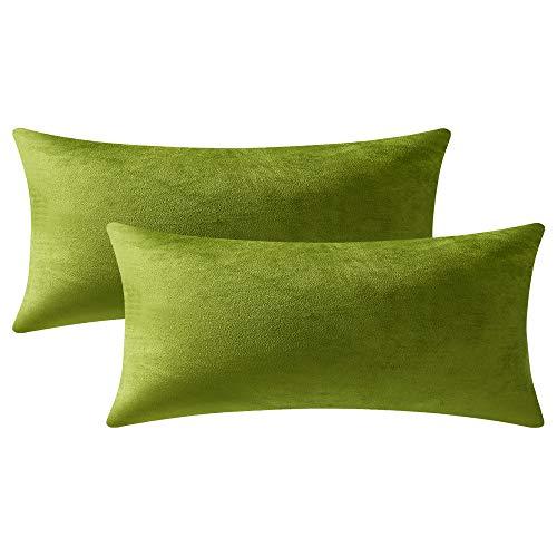 DEZENE 40cm x 80cm Gelblich-grüne Kissenbezüge: 2er Pack, Rechteckige, Dekorative Kissenbezüge aus Weichem Samt für das Sofa auf dem Bauernhof