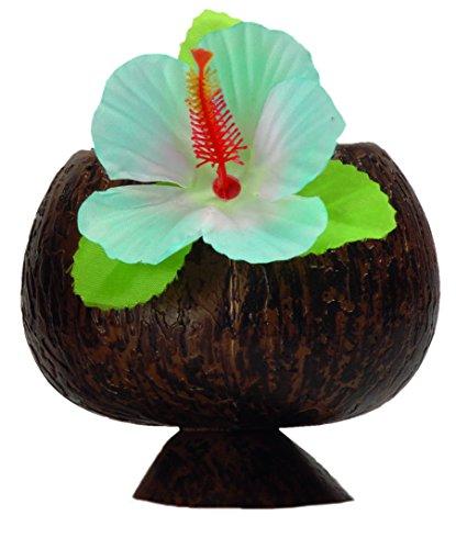 Boland 52374 Coupe de Style hawaïen en Forme de Noix de Coco
