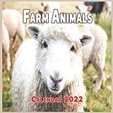 Farm Animals Calendar 2022: Cute Animal Calendar 2022-2023, Monthly Square Calendar 2022, Great Gifts For Animal Lovers, 16 Month Calendar 2022