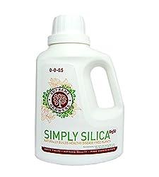 soluble silica