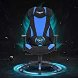 Acethrone Gaming Racing Office Chair with Mesh,Ergonomic Adjustable Swivel Chair Recliner with Lumbar Pillow and Headrest, Mobility Height and Reclining Device High Back Chair for Adults (b)