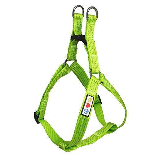 PAWTITAS verstellbares, Reflektierendes Step-in-Softgeschirr für Welpen | Hundegeschirr einstellbar ideal für sportliche Aktivitäten | Extra Klein - Grün Hundegeschirr