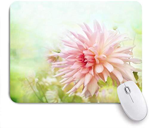 Blumenwiese Sonniger Natürlicher Sonnenschein Bedeckte Tau-Sonnenlicht-Außen-Nahaufnahme Gummiunterseite Maus Pad,Schreibtischunterlage,Mausunterlage,Mausmatte