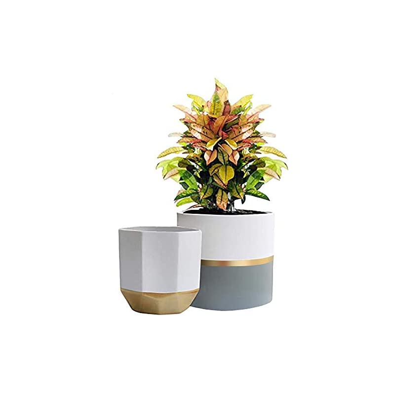 """silk flower arrangements la jolie muse white ceramic flower pot garden planters 6.5"""" pack 2 indoor plant containers with gold and grey detailing"""