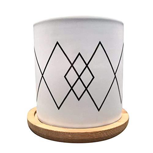 Alpha Collaborative Pot Ceramic Geometric Modern Wooden Base Set Succulent Plant Pot Cactus Plant Pot Flower Pot Container Planter Bonsai Pots with A Hole Idea 3 in Set