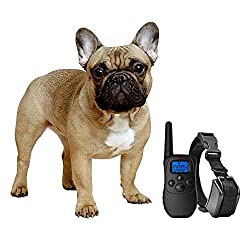 eXuby Shock Collar for Small Dogs with Remote