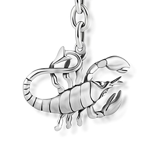 STERLL Llavero para hombre signo zodiacal Escorpio, de plata 925 oxidada, ideal como regalo de hombre, con una bolsa