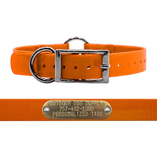 """Outdoor Dog Supply 1"""" Wide Solid Ring in Center Dog Collar Strap with Custom Brass Name Plate (21"""" Long, Orange)"""