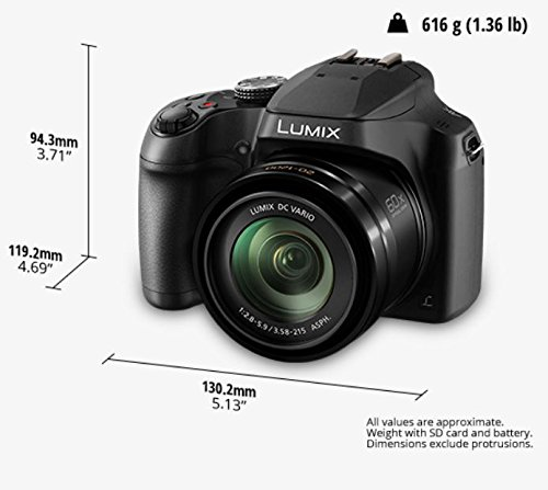 Panasonic LUMIX FZ80 4K Digital Camera, 18.1 Megapixel Video Camera, 60X Zoom DC VARIO 20-1200mm Lens, F2.8-5.9 Aperture, Power O.I.S. Stabilization, Touch Enabled 3-Inch LCD, Wi-Fi, DC-FZ80K (Black)