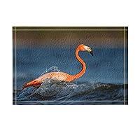 Assanu 鳥の装飾フラミンゴウォーターバスラグで遊ぶ滑り止め玄関フロア玄関屋外屋内正面玄関マットキッズバスマット15.7x23.6inバスルームアクセサリー