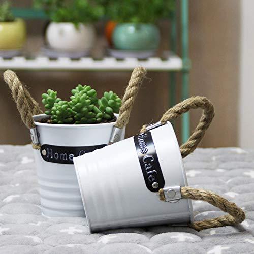 Asdomo Pot de fleurs à suspendre en métal coloré pour balcon, mur, jardin, maison, 16 x 10 cm