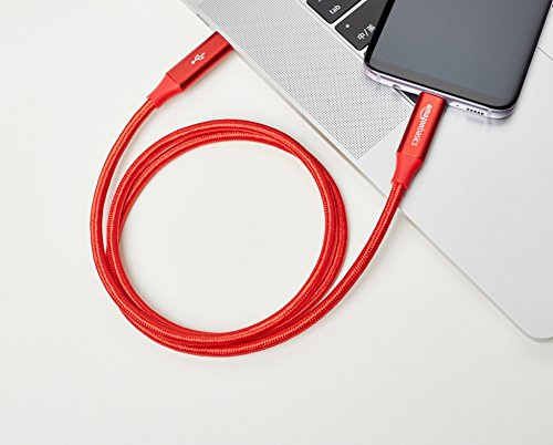 Amazon Basics - Verbindungskabel, USB Typ C auf USB Typ C, USB-3.1-Standard der 1. Generation, doppelt geflochtenes Nylon, 0,9 m, Rot