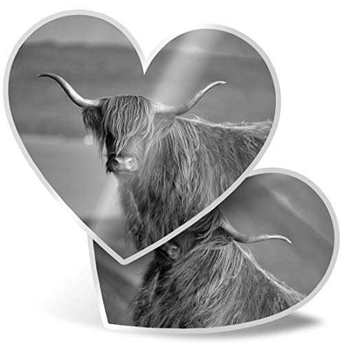 Fantastico 2 adesivi a forma di cuore da 15 cm – BW – Fluffy Highland scozzese mucca divertente decalcomanie per computer portatili, tablet, bagagli, libri di rottami, frigoriferi, ottimo regalo # 37244
