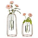 Nuptio Vases Set of 2 Glass Vases with Metal Frame, Modern Rose Gold Frame Cylinder Clear Vase Planter Terrariums, Flower Holder Decorations for Wedding Living Room, Office, Party (Rose Gold, S+L)