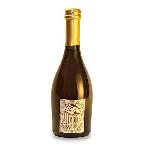 Birra Termale Artigianale Monti 500 ml