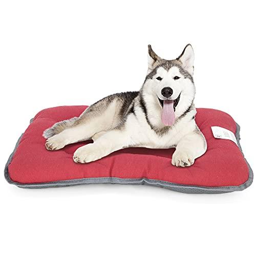 Petaccom-petking Cama para Perro Medianos - Colchón para Mascotas Extraíble y Lavable Cojín Perros Suave y Antideslizante, Colores Aleatorios, S, 65 x 50 cm