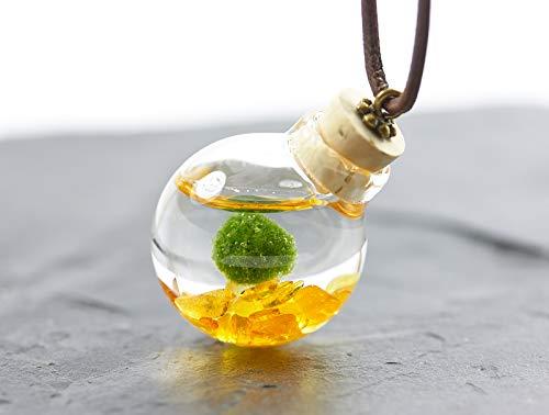 Unterwasserwelt Marimo Bernstein echte Wasserpflanze Kette echtes Borosilikatglas Aquarium