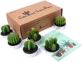 AiXiAng Handmade Delicate Tealight Cactus Candles for Home Decorative, 6 Pcs in Gift Box