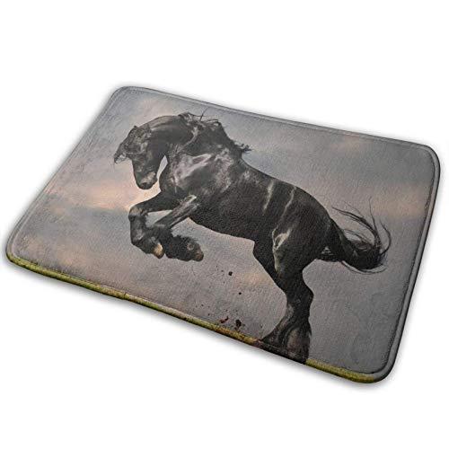 Felpudo de bienvenida,alfombrilla antideslizante para el suelo de entrada con salto de caballo negro,alfombrilla para puerta delantera para interiores y exteriores,felpudos de alfombra lavables a máqu
