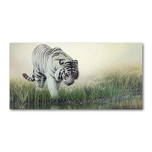 Tulup Glas-Bild Wandbild aus Glas - Wandkunst - Wandbild hinter gehärtetem Sicherheitsglas - Dekorative Wand für Küche & Wohnzimmer 120x60 - Tiere - Weißer Tiger - Weiß