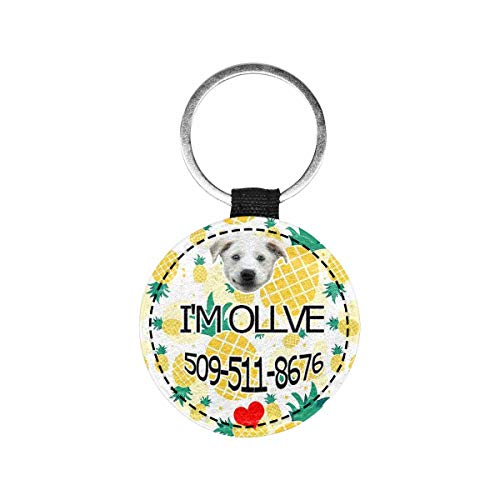 Artsadd Custom Face&Name Pineapple Pet ID Tag Personalized Text Double Sides Dog Tag and Cat Tag