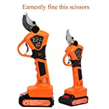 Professional Lithium Battery Powered Tree Branch Pruner, Cordless Electric Pruning Shears Less Effort Garden Shears Can Cut Up To30mm Diameter Size Tree Branches.Perfect for Leaves and Debris,