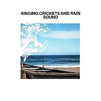 Singing Crickets and Rain Sound