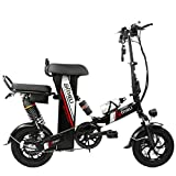 BX.JX Foldable Electric Car, Removable Lithium Battery, Mechanical Double Disc Brake, LCD Screen, Dual Boot, USB Mobile Phone Charging, 100km Driving,Black,C