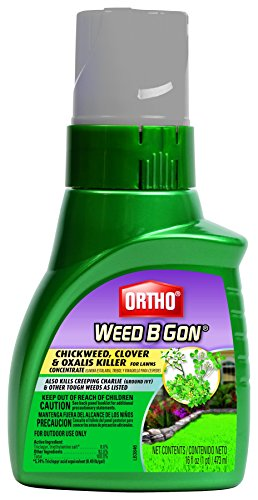 Ortho Weed B Gon Chickweed Concentrate Clover & Oxalis Killer for Lawn (Case of 6), 16 oz