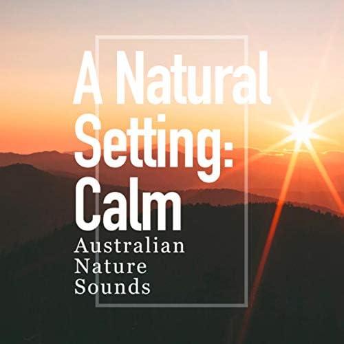 Australian Nature Sounds