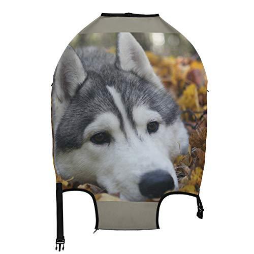AJINGA Huskies - Funda protectora para equipaje de viaje para perros, cachorros, nieve, invierno, color blanco