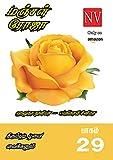 மஞ்சள் ரோஜா - Manjal Roja : Haludha Nuniya: திரும்புடி பூவை வைக்கனும் பாகம் 29 / Thirumbudi Poovai Vaikkanum Part 29 (Tamil Edition)