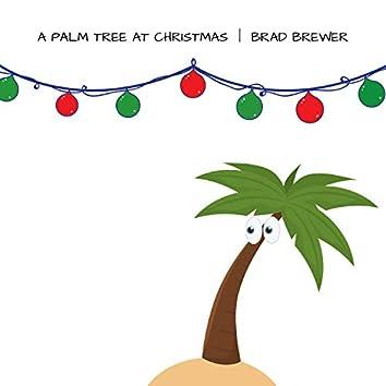 A Palm Tree at Christmas