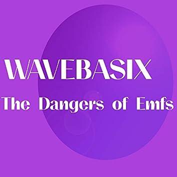 The Dangers of Emfs