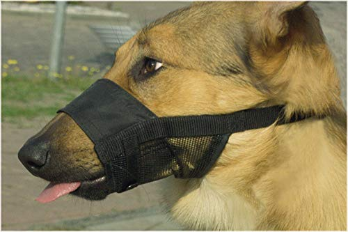 Beeztees mand voor honden, maat S, 13-16 cm, zwart