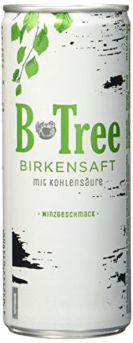 B-Tree Birkensaft, 12er Pack, EINWEG (12 x 250 ml)
