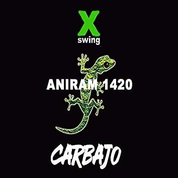 ANIRAM 1420