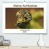 Kleine Achtbeiner (Premium, hochwertiger DIN A2 Wandkalender 2022, Kunstdruck in Hochglanz): Spinnen unserer Heimat, aesthetisch fotografiert (Monatskalender, 14 Seiten )
