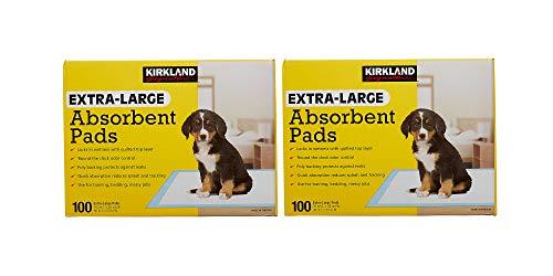Kirkland Signature Extra-Large Absorbent Pads, 200 Large Pads, 30x23