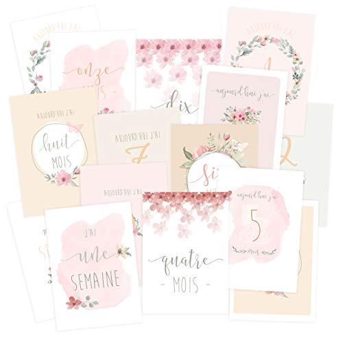 Carte étape bébé 'ma première année' Rose, lot de 15 cartes de 1 semaine à 1 an