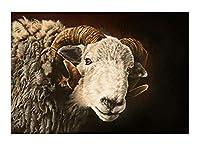 Diy 数字油絵 数字塗り絵 _ 羊ラム雌羊子羊縁起の良い動物 _ 大人の子供のためのギフト _ デジタル油絵 数字キットでペイント ホーム オフィス装飾 _ 40X50Cm _ 【ギフト】木製フレーム