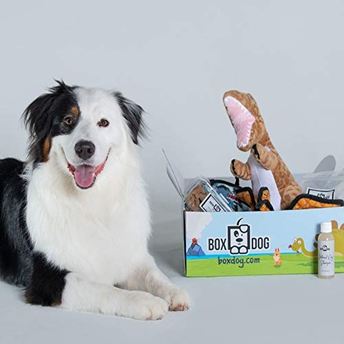 BoxDog - 4 Giant Seasonal Dog Boxes per Year Filled With Handmade Treats, Vegan Skincare, Dog Toys, Gear & Gadgets: Small Dog