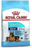 Royal Canin Maxi Starter, 1 kg